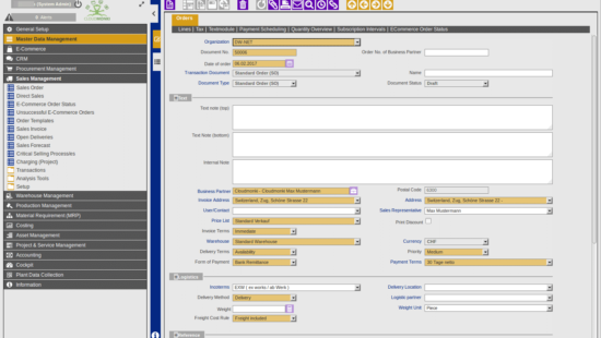 ERP Intuitiv webbased User Interface